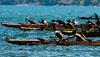 Canoe racing graphic