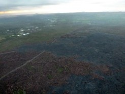 The stalled downslope front and breakout area of the Kilauea June 27th Lava Flow with Pahoa town in the upper part of the image on Tuesday morning, March 17, 2015. Photo courtesy of Hawaii County Civil Defense