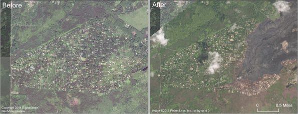 This comparison shows satellite images of Leilani Estates subdivision before and after. The image on the right, collected in early September 2018, shows that the eastern portion of the subdivision has been covered by lava. The fissure 8 lava channel runs northeast from the fissure 8 cone at the start of the channel. Note also the brown areas of dead vegetation south of the lava flow. Highway 130 runs north-south along the left side of the images.