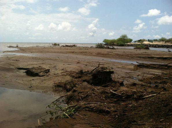 The shoresof Pelekāne Bay in August 2015. Severe rainfall and flash flooding followed a 4,500-acrewildfire mauka of Kawaihae, pushing debris ma kai. Photo courtesy The KohalaCenter.