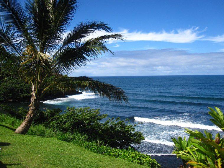 Hawaii Eco Scene