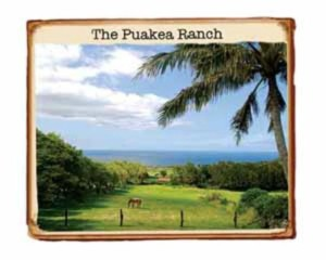 Puakea Ranch Photo From Hawaii Eco Resort