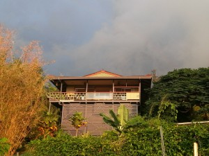 permaculture, eco living, big island, hawaii