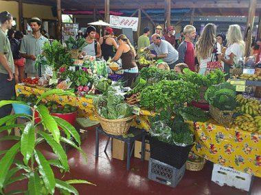 Indoor Shopping at a Big Island farmers market in puna hawaii