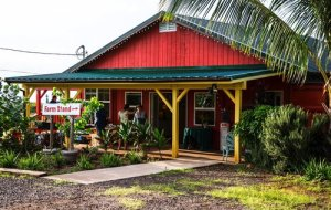 Picture of the farm stand owned and operated by La`akea intentional community on Maui Hawaii