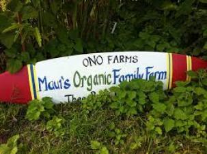 Maui Organic Farms - Ono Farms