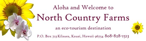 North Country Farms Logo Kauai Eco Resort Hawaii