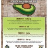 Avocado Festival - Big Island 2015