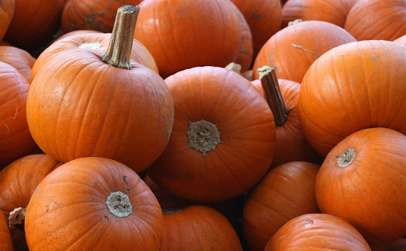 Here a pumpkin party, there a pumpkin party