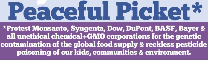 GMO/pesticide protest