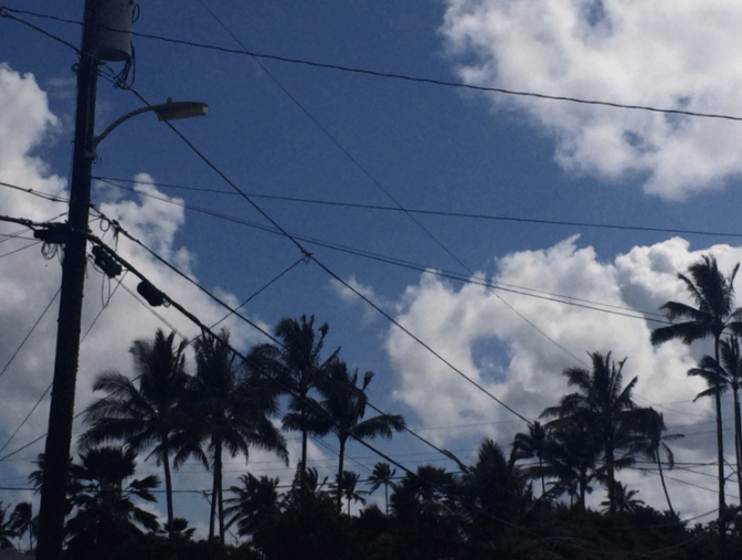 POWERFUL: Much of Oahu's tropical beauty is marred by a crisscross of aging power polls and powerlines, critics say.