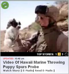 Iraq Puppy Video