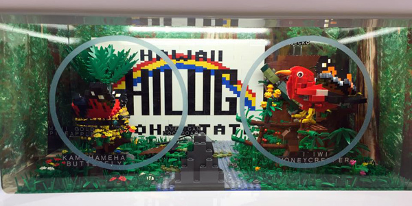 HILUG LEGO Store Display