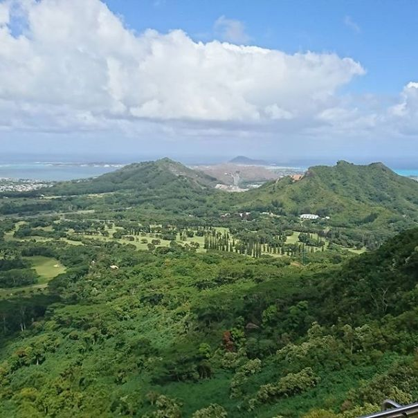 39年ぶりにヌウアヌパリに行ってみた。懐かしい眺め。Nu'uanu Pali Lookout.  Can't believe 39 years have passed since I last visited this place!
