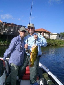 Peacock Bass Fly Fishing in Florida