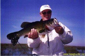 Florida Big Bass