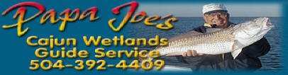 PJ Fishing Charters