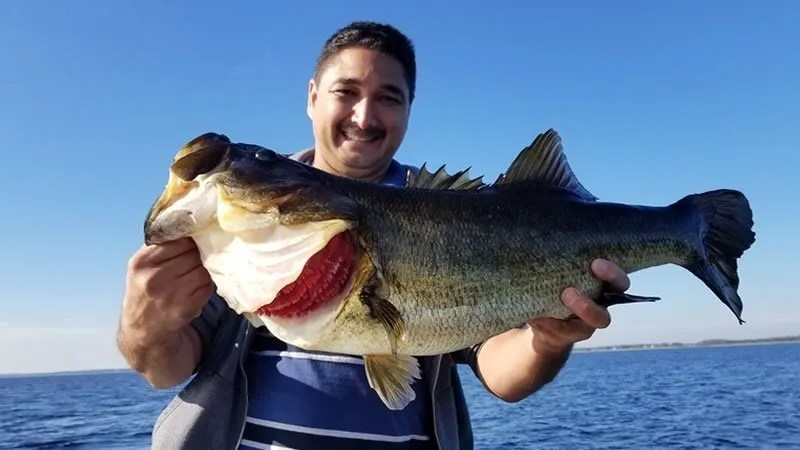 Orlando Fishing Monster Bass