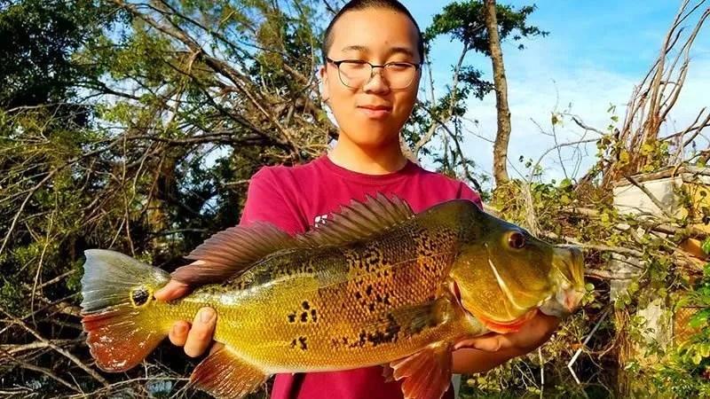 Outstanding Blue Lagoon Fishing