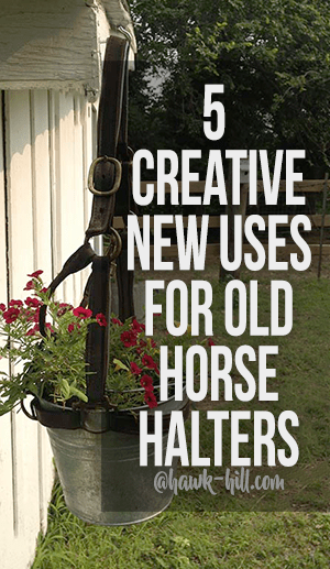 5 creative ways to repurpose old Horse Halters