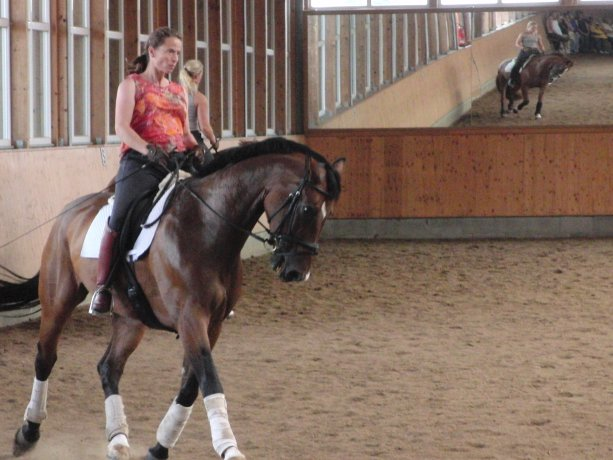 Isabell Werth schooling at home