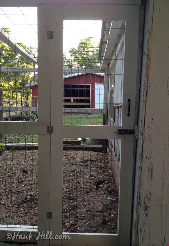 Narrow door to chicken coop run