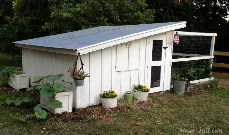 Renovated Antique Chicken Coop with Slant Roof - Hawk Hill