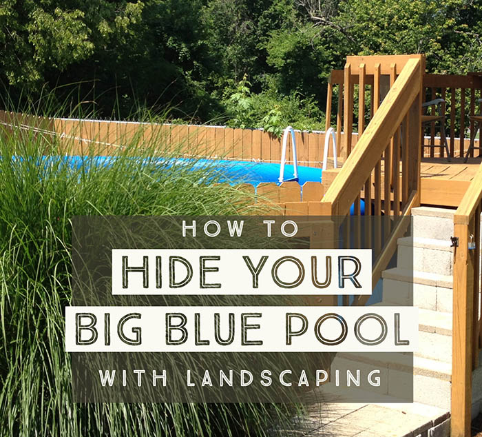 Hiding A Big Blue Above Ground Pool In A Landscaped