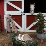 14 Ideas For Stylish Horse Christmas Decorations Hawk Hill