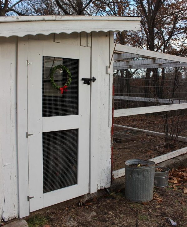 chicken coop decorated for christmas