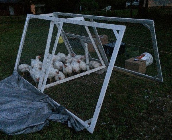DIY lightweight chicken tractor that folds flat for storage - Hawk-Hill.com