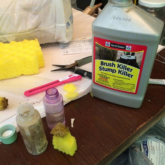 hh_blog_diy_herbicide_applicator00
