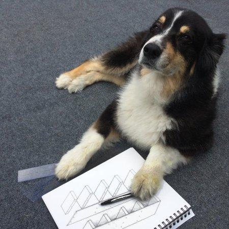 My Australian Shepherd architectural design consultant friend said the schematics work!