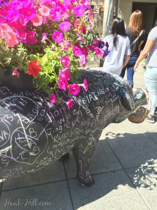 The chalk pig at the market's rooftop garden.