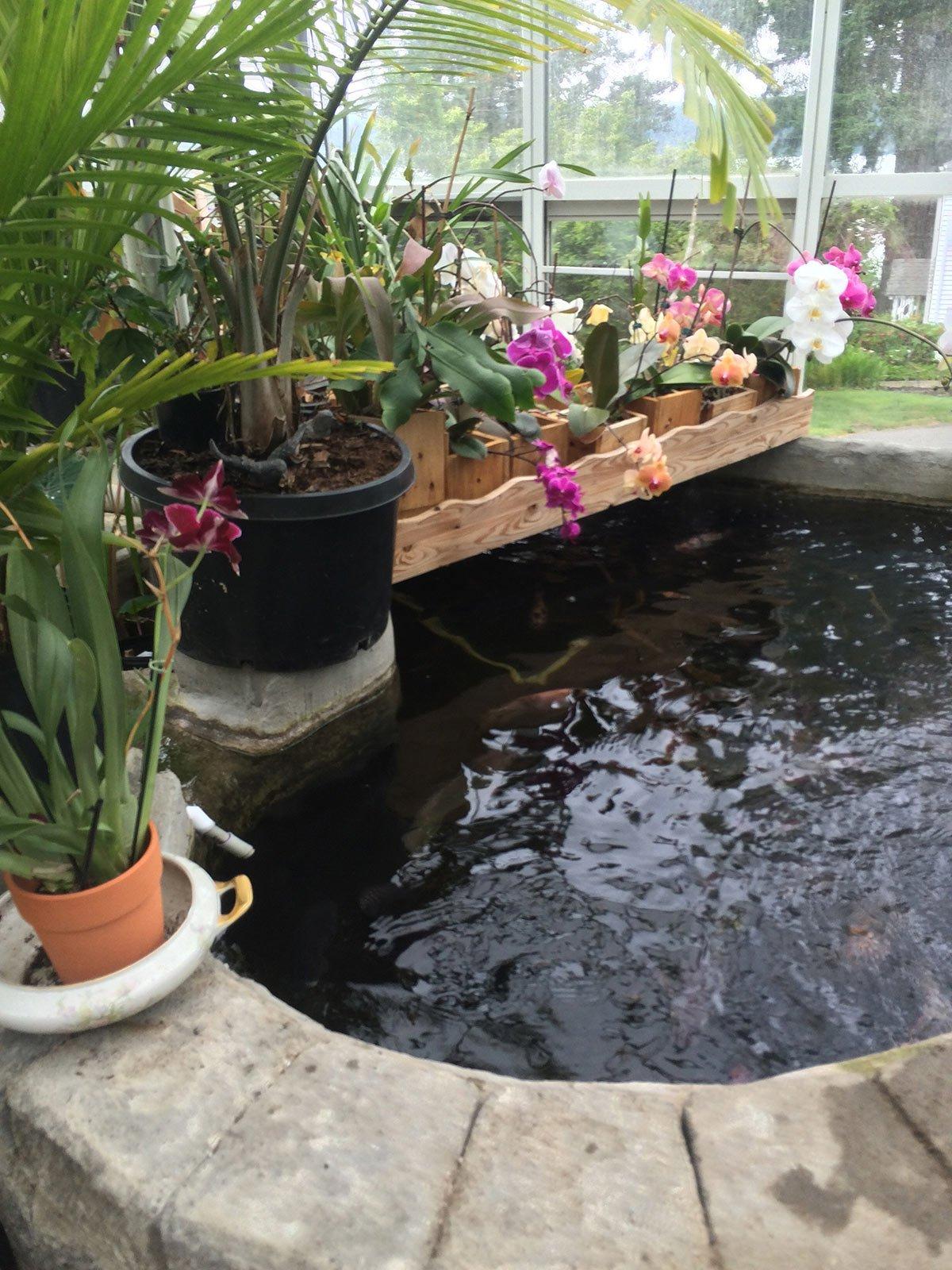 A Collection of Whimsical Garden Ideas - Hawk Hill on Whimsical Backyard Ideas id=60994