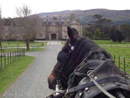 My cheap ireland itinerary muckrosshorses