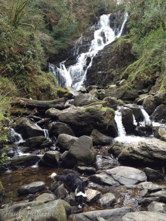 Torc waterfall near Killarney Ireland was a short hike from 4 or 5 other local and free spots of interest