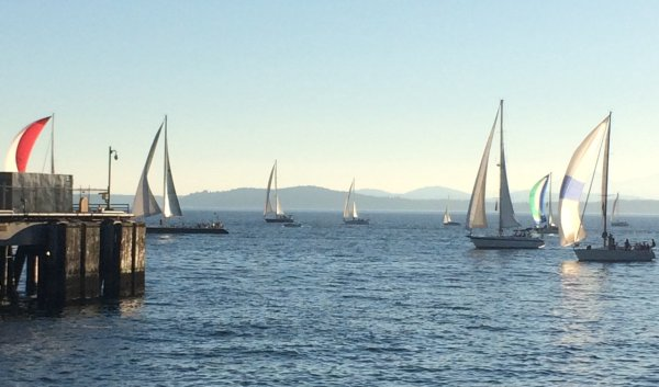 seattle_sailboats_free_show