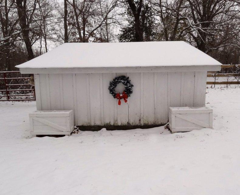 chicken_coop_in_winter_snow