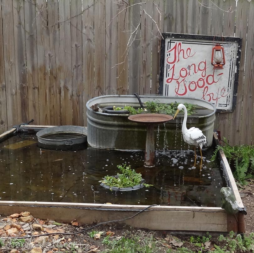Build A Raised Pond