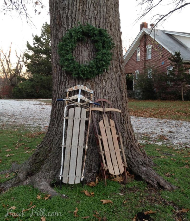 decorating a deciduous tree for christmas