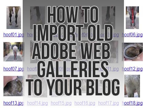 How to Import Adobe Galleries into Blogs