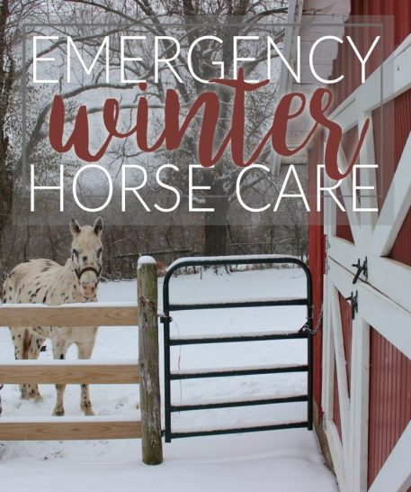 How to build a naturally heated water trough in case winter weather cuts electricity to your hobby farm