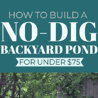 How to Build a No-Dig Backyard Pond for Under $70