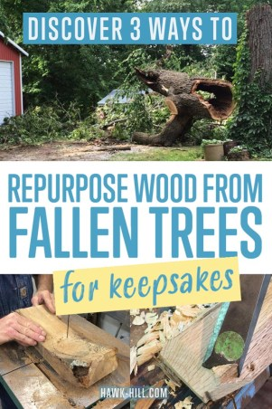 How to repurpose a beloved fallen tree into art and objects you can continue to enjoy