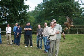 Corporate Entertainment Falconry