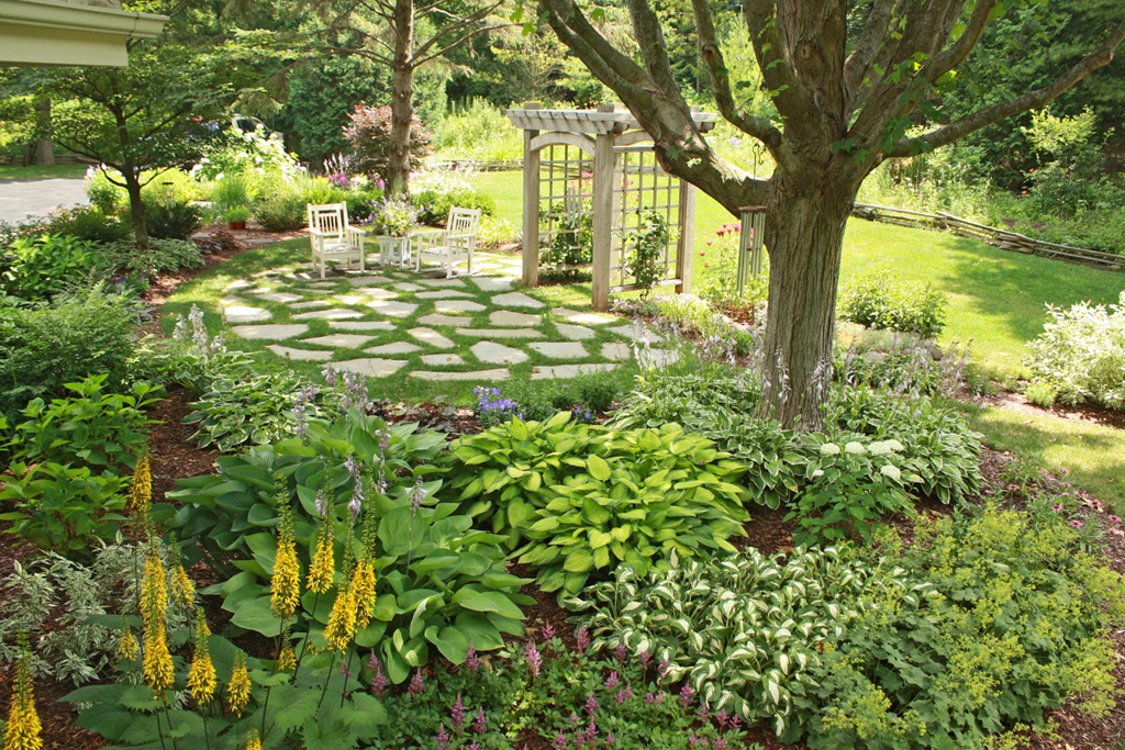 Shade Garden Basics - Hawks Landscape, Inc. on Shady Yard Ideas  id=13440