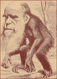 ציור של דארווין כקוף בידי מתנגדי האבולוציה, המחצית השניה של המאה ה-19
