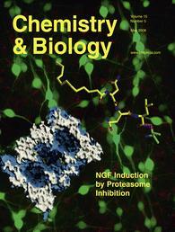 שער כתב העת 'כימיה & ביולוגיה'.