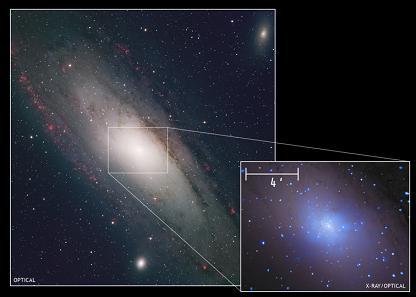 M31 אנדרומדה - הגלקסיה השכנה לשביל החלב